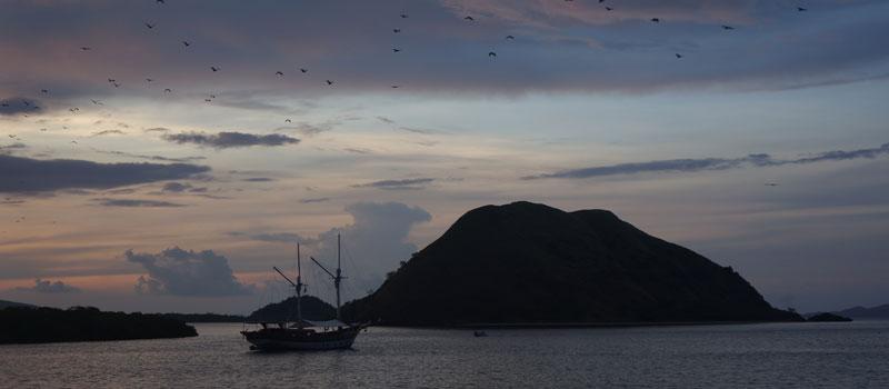 Pulau Kalong