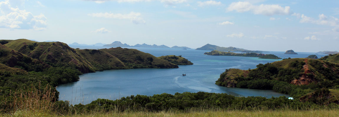 Bukit pulau Rinca !