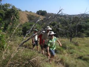 Hunting Komodo
