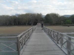 Pintu Masuk Pulau Komodo